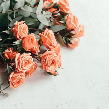 Coral roses beautiful spring bouquet on a white background by Edalin