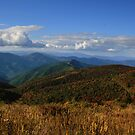 Pisgah Light by middleofaplace