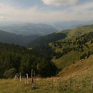 Monte Grappa by middleofaplace