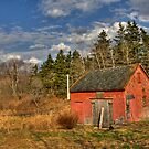 Lil' Red Barn  by Sue  Cullumber