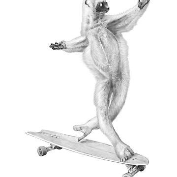 Lemur en el tablero de NikKor