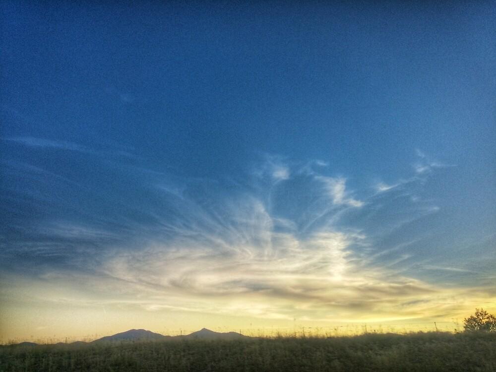 Sunset Swirl by MommaZana