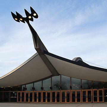 Is it a Bird, Is it a Stadium, Is it a Hockey Rink? by janemcdougall