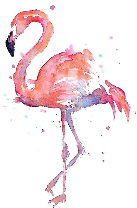 Pink Flamingo by holly92