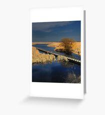 Point Pelee National Park - Marsh in Spring  Greeting Card