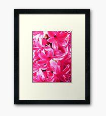 Pink Florets Framed Print