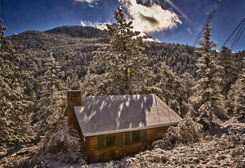 Cabin In The Woods by Adam Northam