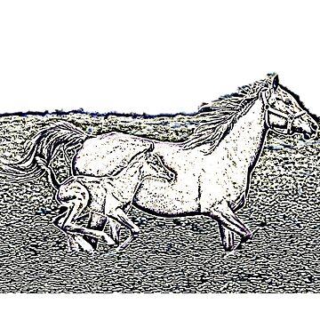 Wild Horses by Dato123