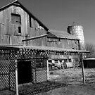 A working Farm...... by Larry Llewellyn