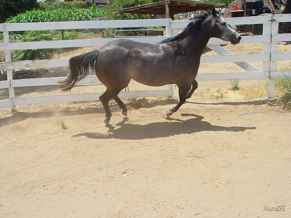 Jodi Horse by kiara55