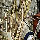 Passing Times 2 - There's Still Life on the Farm by sirthomas1960