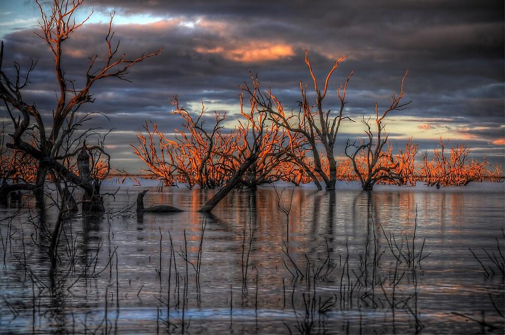 Lake Pamamaroo by Rod Wilkinson