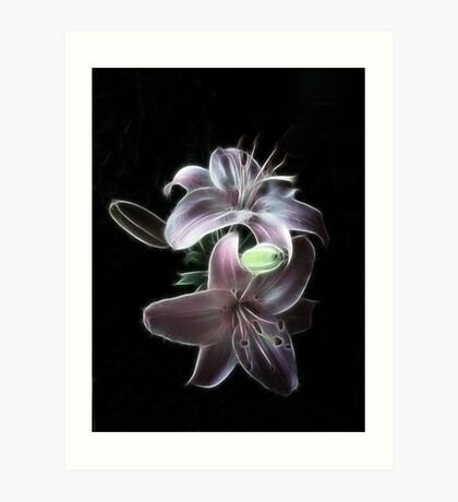 Lilliums Art Print