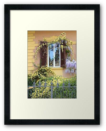 FLORENCE, THE SPRING WINDOW by MICHAELA SIEBEROVA