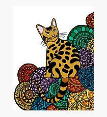 Lámina fotográfica MANDALA CAT3