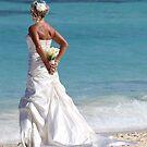 Wedding on the beach by supermimai