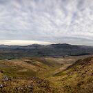 Towards Blencathra by David Robinson