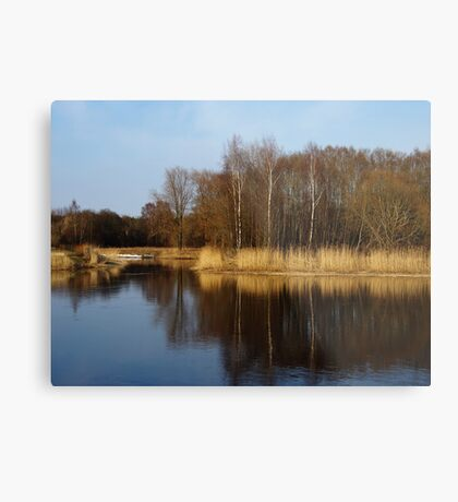 April river. IV Metal Print