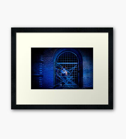 In The Spider's Web Framed Print