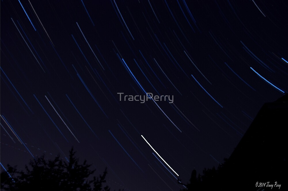 Startrails 2 by TracyPerry