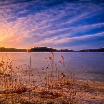 Winter Morning Light 2 by wekegene