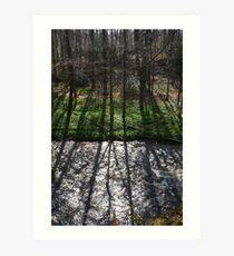 Shadows on South Esk River Art Print