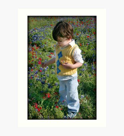 Texas Wildflowers.... Art Print