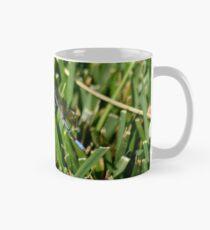 Dragonfly on grass at Gibbs Garden Mug