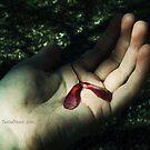 Set Me Free. by TwistedHearts
