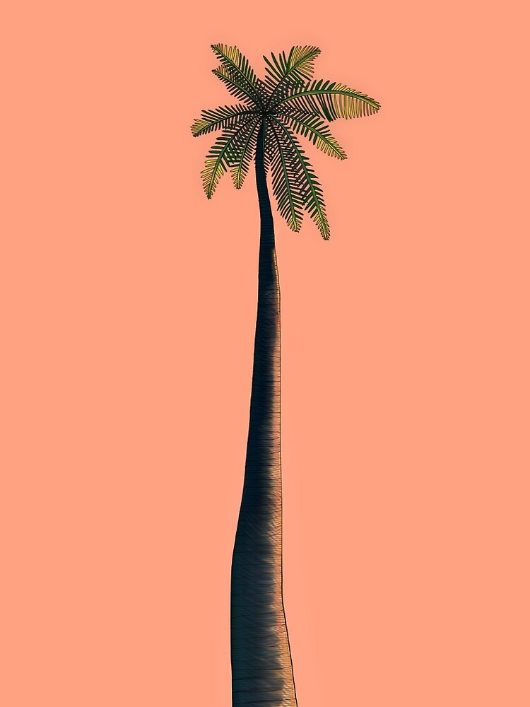 Pink Palm by Jane H