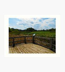 Sheldon Marsh Scenic Overlook 2 Art Print