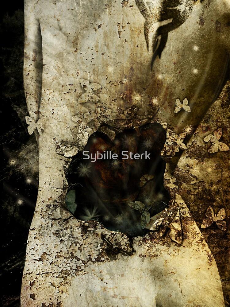 Black Hole by Sybille Sterk