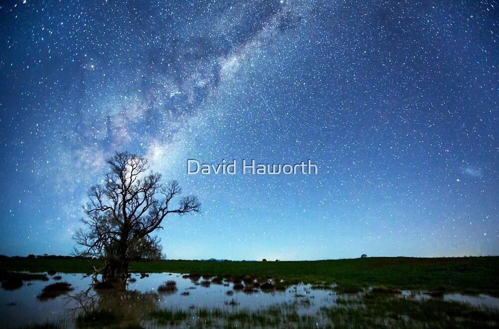 Living in the spotlight by David Haworth
