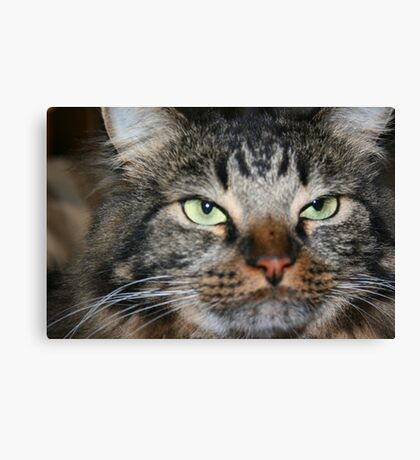 You Talking To Me??? Canvas Print