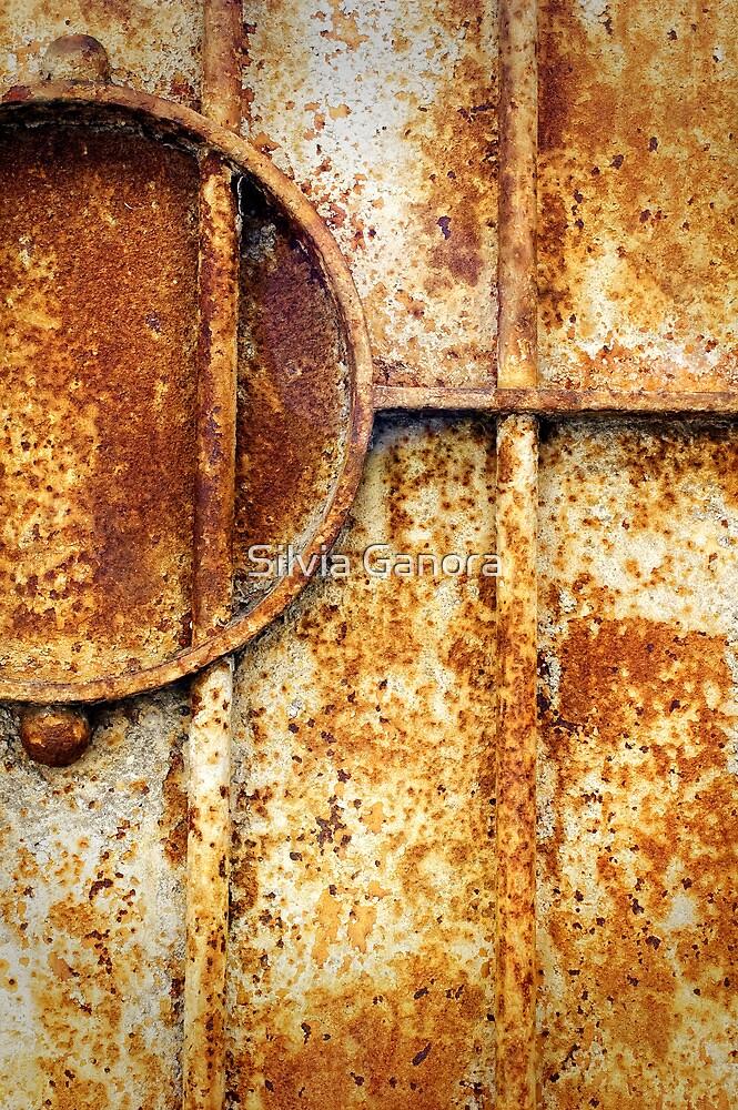 Rusty gate detail by Silvia Ganora