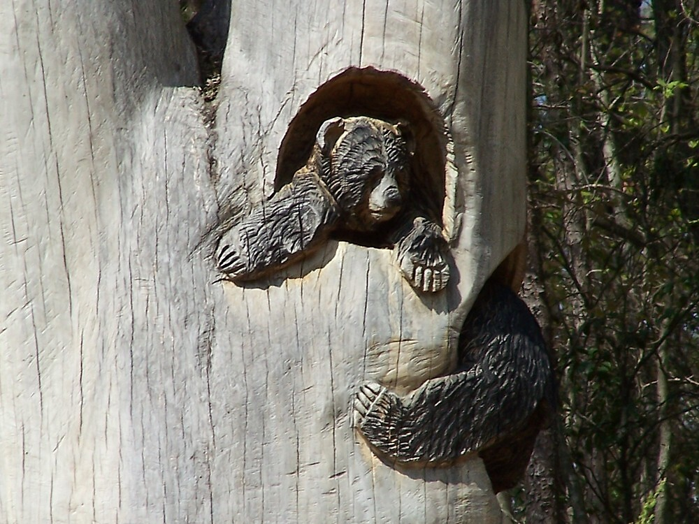 Bear carved into hole in tree by MeMeBev