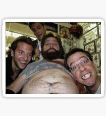 Kater Selfie Sticker