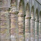 Fountains Abbey Arches by monkeyferret