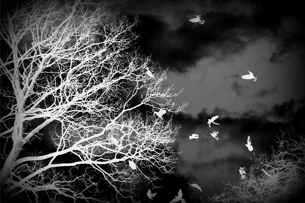 Inverted Black and White Tree with Birds by EliaCarvalho