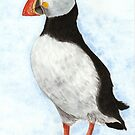 Puffin Watercolour by Martina Fagan