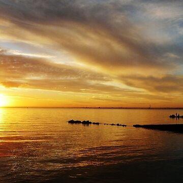 Golden Sunset at Brighton Beach by rozmcq