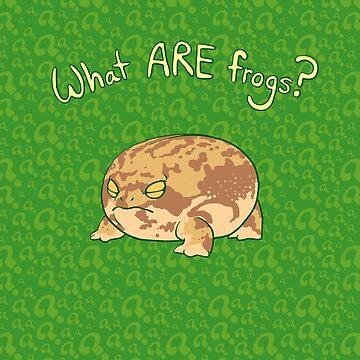 What ARE Frogs? (Desert Rain edition) by BigOrangeStar