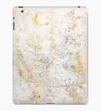 Snowflex iPad Case/Skin
