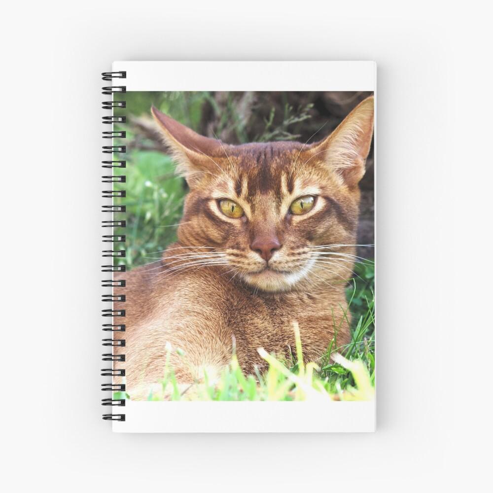 Abyssian Cat in Grass Spiral Notebook