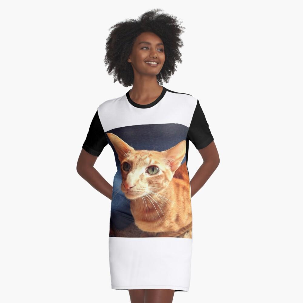 Oriental Cat Graphic T-Shirt Dress