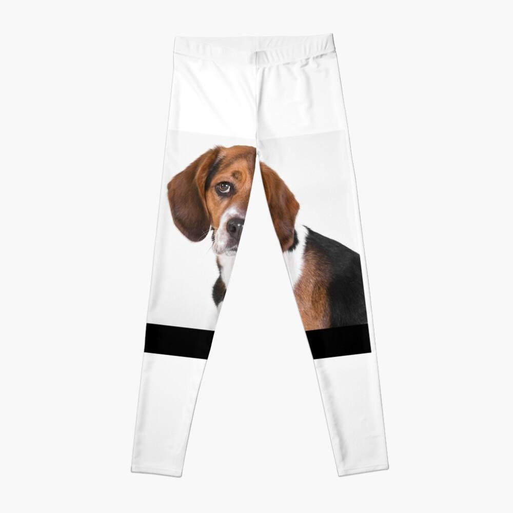 Beagle Leggings