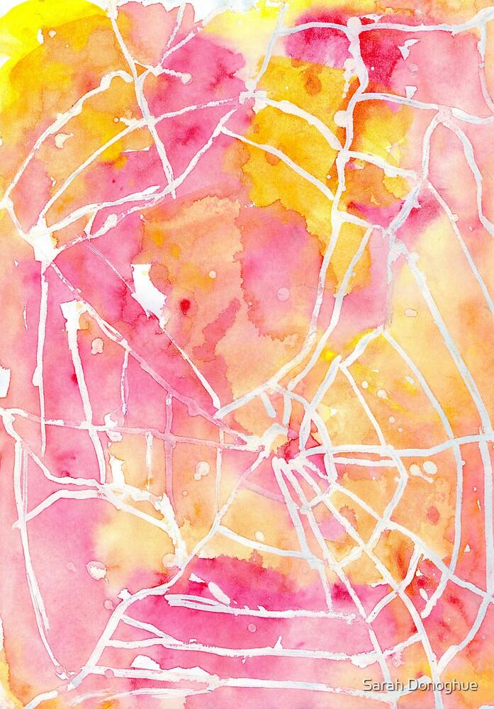Spiders Lair by Sarah Donoghue