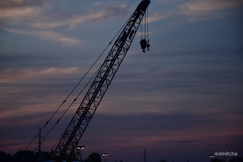 Crane at Sunset by Mitali Dalwalla