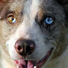 Blue Eyes by Ruth Anne  Stevens