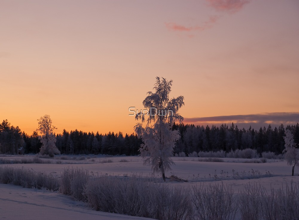 Winterfrost by SunDwn